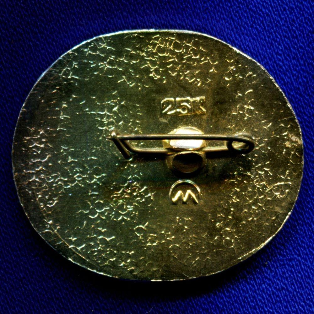Значок «Первый спутник 1957» Алюминий Булавка - 1