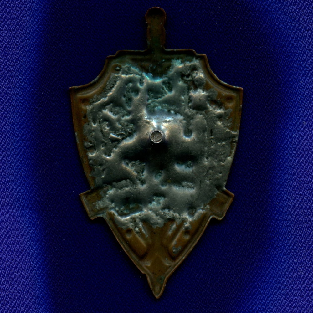 Знак «Пограничник Арктики» Тяжелый металл Винт - 1
