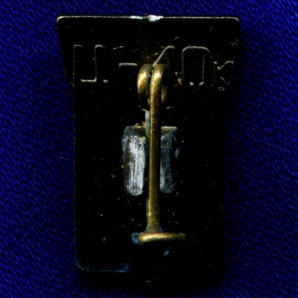 Значок «Целиноград» Легкий металл Стекло Булавка - 1