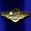 Знак «Классный специалист» II класс Легкий металл Булавка - 1